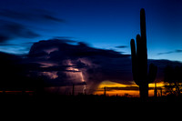 Saguaros and Thunderstorms