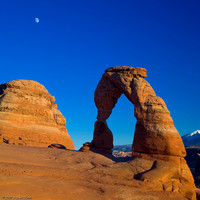 The Moon and Delicate Arch