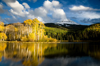 Aspens and a Lake