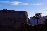 Tree and Cliffs