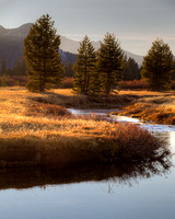 Late Fall in the Eastern Sierras - 2011